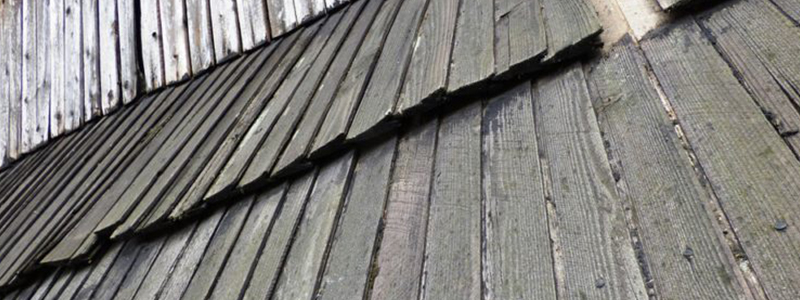 Spot Roof Damage Before it Spreads