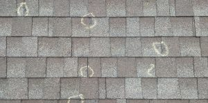 Golden Rule Contractors Free Inspections